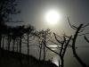 leseigneur_laurent_20130425_dune-sunset